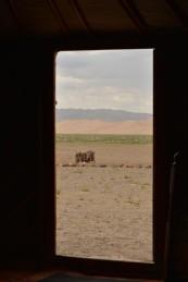 Mongolia_14sml
